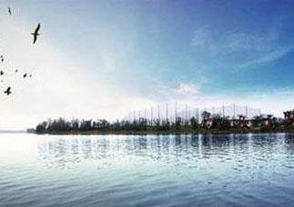 鄂州市梁子湖区农改水项目