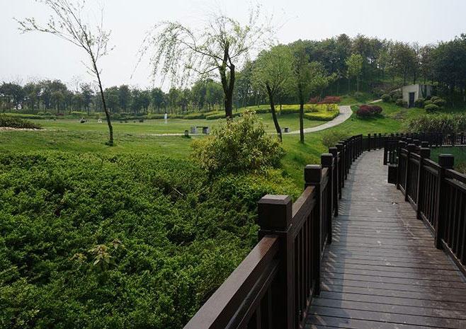 中铁·青竹湖给水消防管网